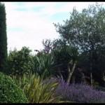 Vincent Combalbert - Pepiniere Producteur - dans le Tarn et Garonne - Montauban 82 - Toulouse 31